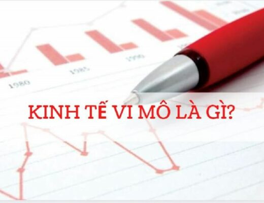 Kinh tế vĩ mô là gì? Phân biệt kinh tế vĩ mô và kinh tế vi mô