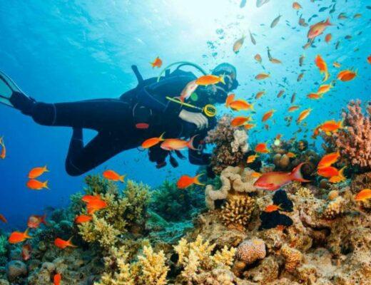 Các môn thể thao dưới nước thú vị nhất định phải thử